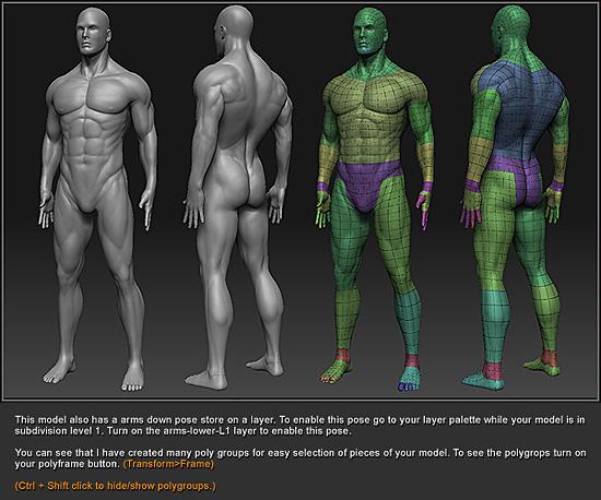 綺麗なメッシュの男性のモデルデータがダウンロード出来ます