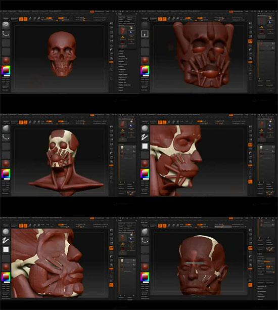 【3DCG】 ZbrushのZSphereを使って顔の筋肉構造からモデリングするムービー