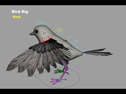 Bird4Final_divx_new.avi