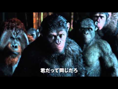 映画「猿の惑星:新世紀(ライジング)」予告編(100秒)