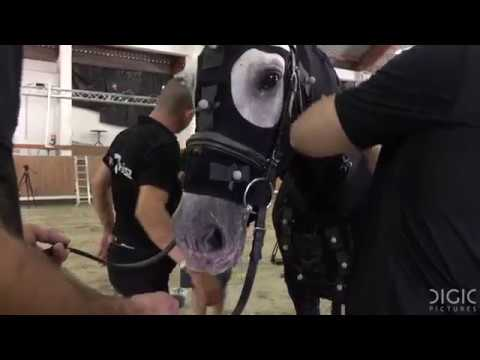 DIGIC Pictures - Horse Mocap making of video