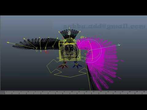 Python Scripting : Auto Bird Rigging In Maya -By Subbu Addanki.mov