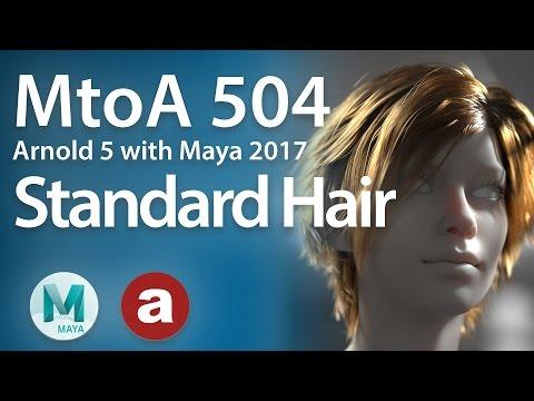 MtoA 504 | Hair Introduction with Arnold 5