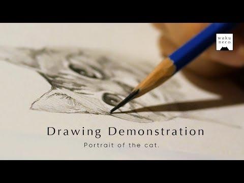 【鉛筆画】Drawing Demonstration by wakuneco.☆猫の絵を描きました。【ASMR】