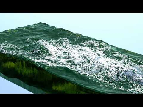 RealFlow 2012: Killer whale
