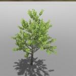 色んな樹木を生成可能!フリーで使える樹木作成ツール『tree[d]』