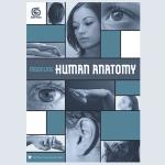 3DTotalの人物モデリングに特化した英語版ebook『Modeling Human Anatomy』リリース
