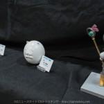 140209_wan-fes_073
