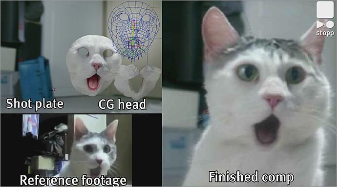 140424_cat
