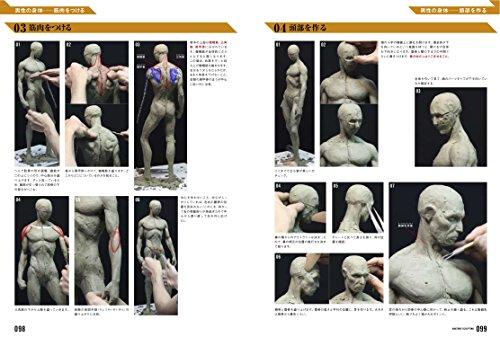 140710_anatomy_sculpting2