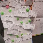 140728_wan-fes_047
