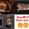 Shave and a Haircut v9.6 for Maya。Maya用ヘアープラグインが無料利用可!